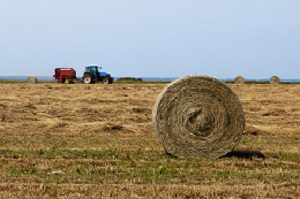 Fam tractor and hay bales.
